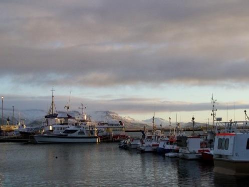 Port de Reykjavík, Novembre 2007, 10 heures