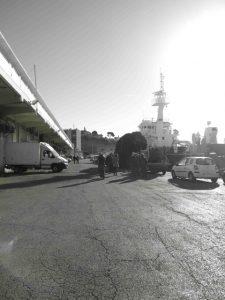 Saumatyport NB